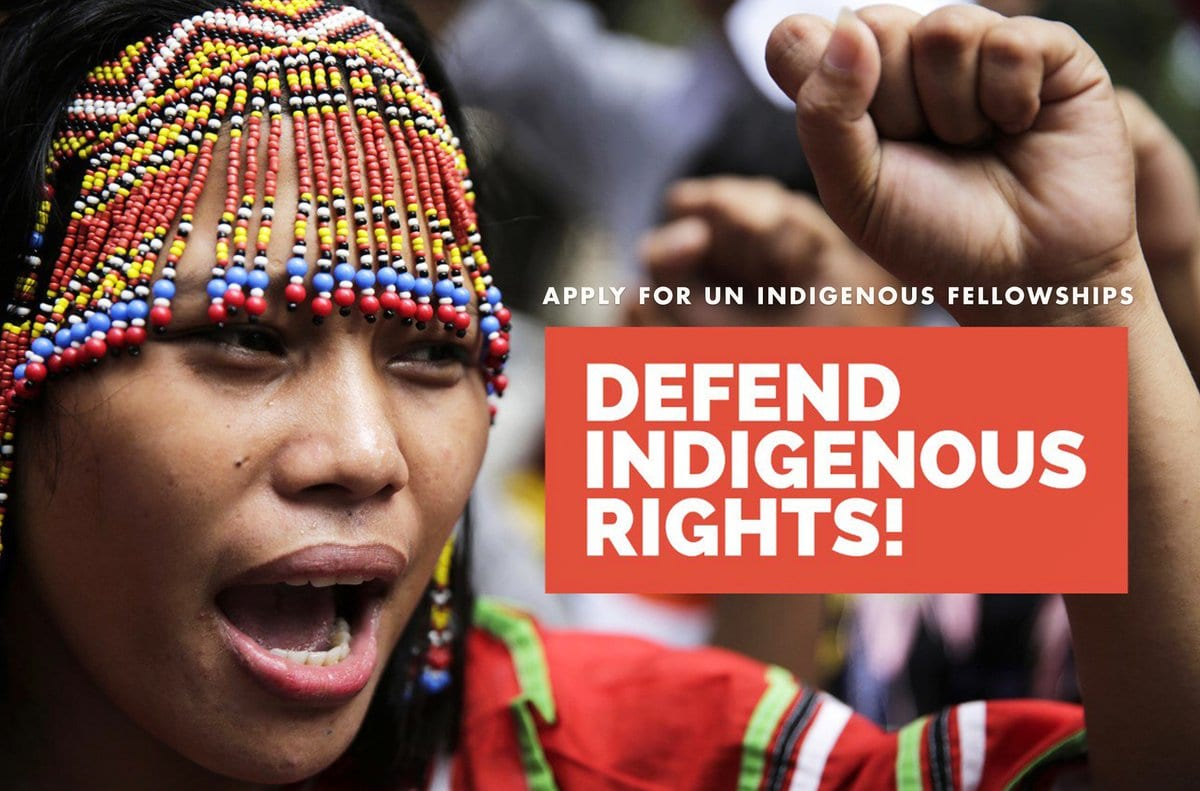 OHCHR Indigenous Fellowship – Training Programme 2019 (Fully-funded to Geneva)