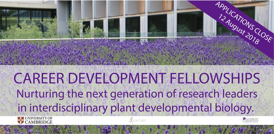 University of Cambridge Research Career Development Fellowships 2018-2019 (Funded)