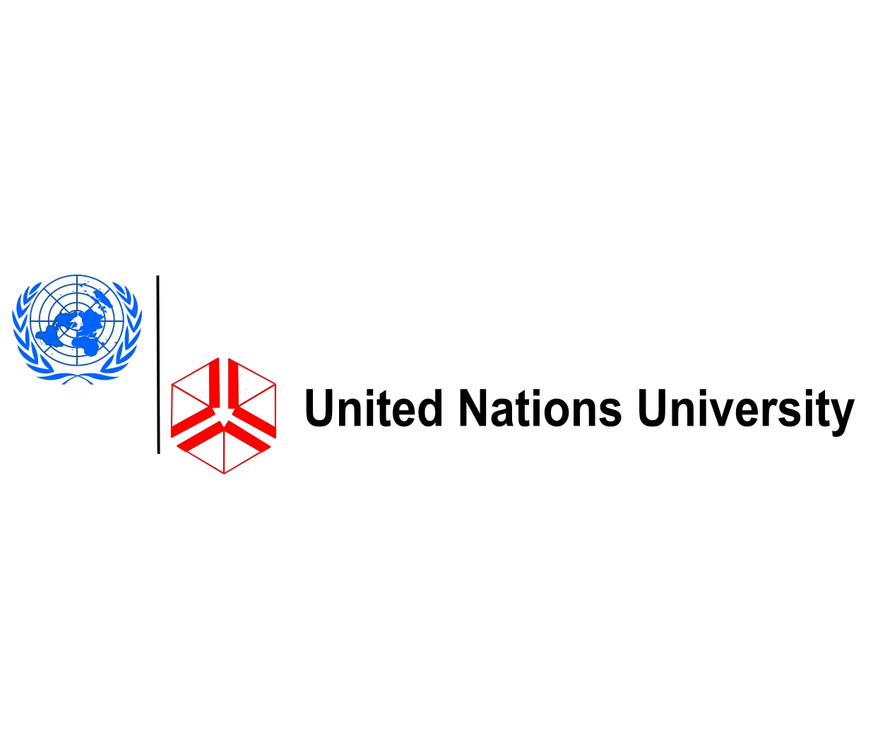 United Nations University Junior Fellows Internship Program 2019, Tokyo, Japan (Moneyed)