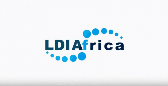 LDI Africa Emerging Organizations Fellowship Program for Young Leaders 2019