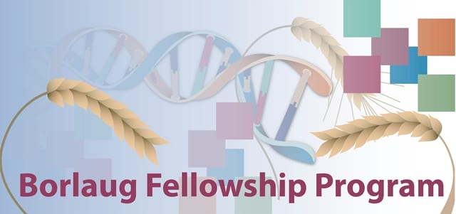 Borlaug International Agricultural Science and Innovation Fellowship Program 2019