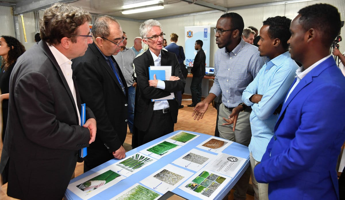 Apply to sign up with the United Nations Somalia Youth Board Of Advisers