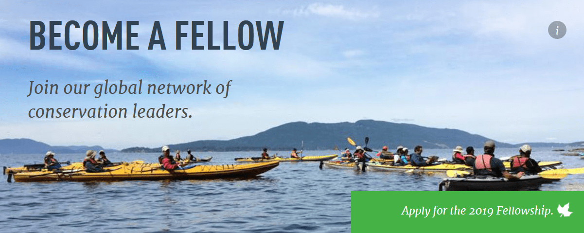 Kinship Preservation Fellows Program 2019 for Conservationists ($6000 stipend and a month of important training)