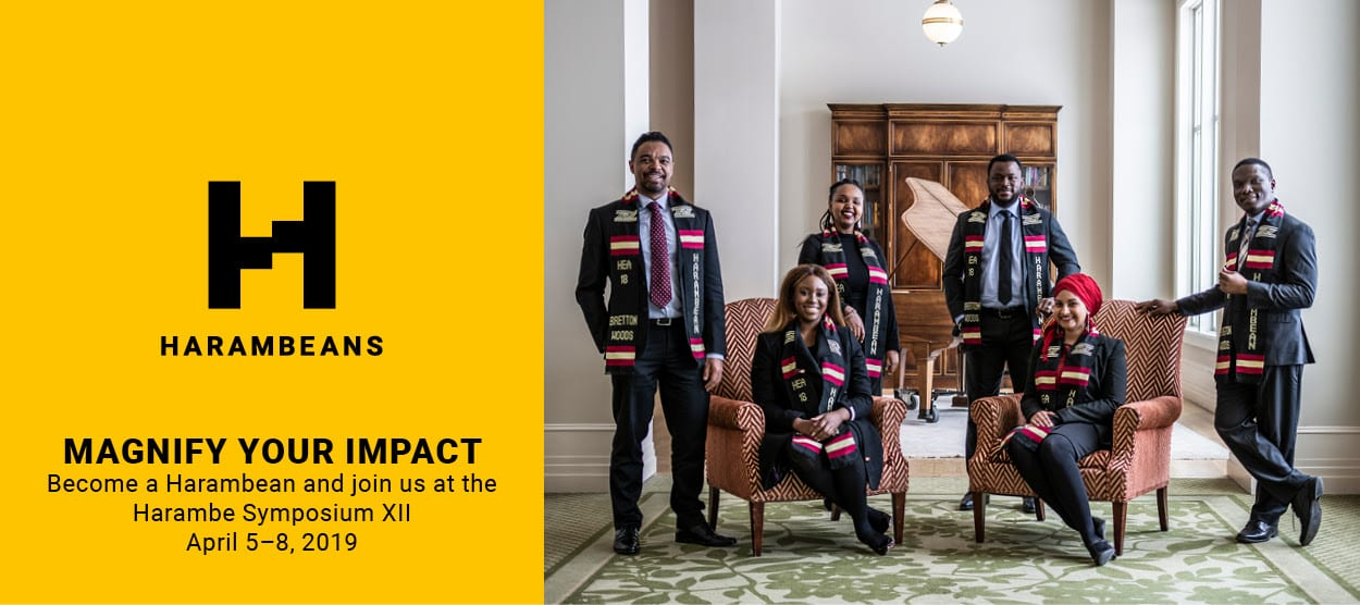 Harambe Business Owner Alliance Program 2019 for African innovators