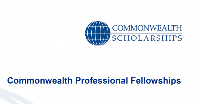 Commonwealth Expert Fellowships for mid-career experts 2018/2019(Fully-funded to the UK)