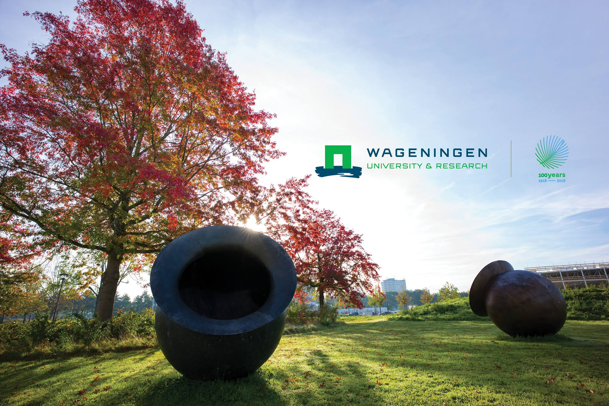 Wageningen University & & Research Study 2019 Africa Scholarship Program (ASP) for young African Trainees (Completely Moneyed to Wageningen, The Netherlands)