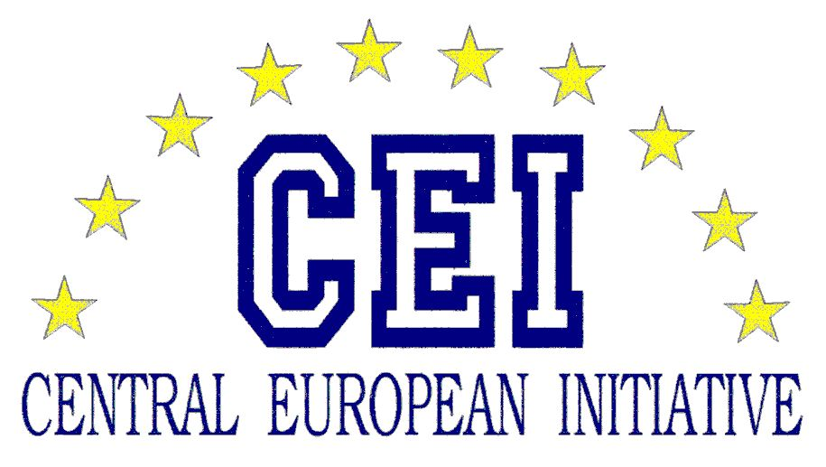 Main European Effort (CEI) Advanced On-the-Job Training for Young Professionals 2019