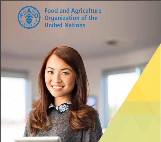 Food and Farming Company of the United Nations (UN FAO) Internship Program 2019