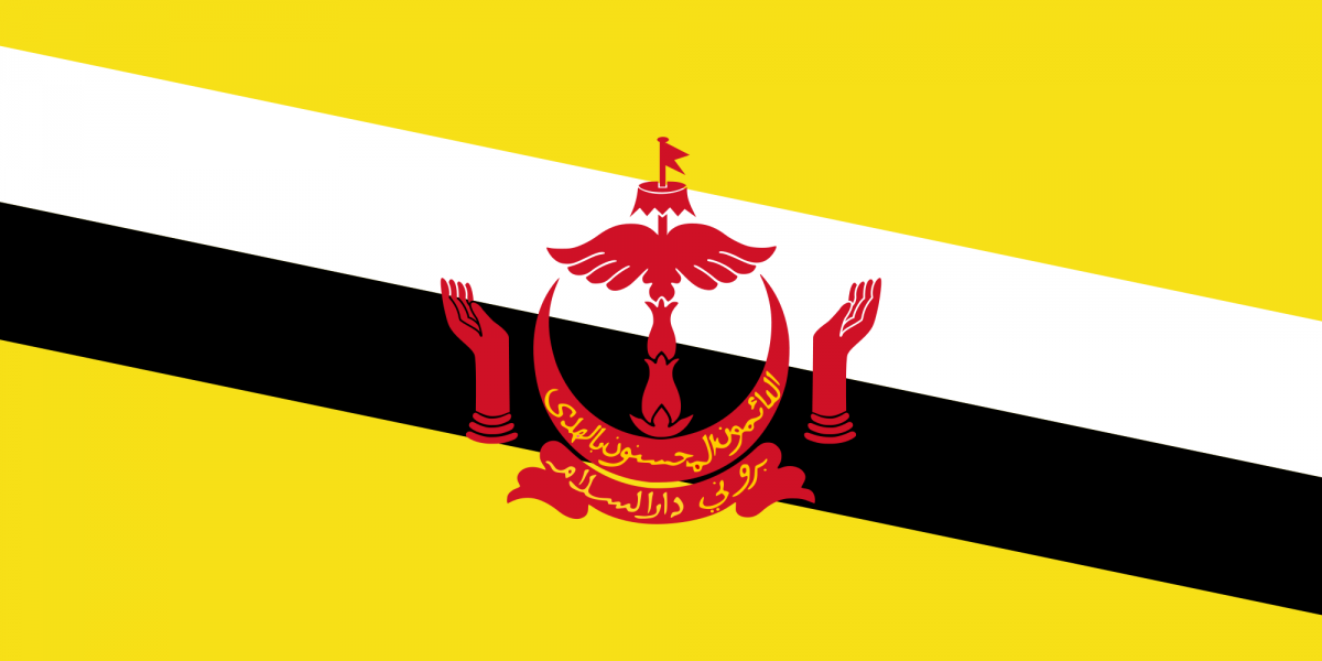 Federal Government of Brunei Darussalam Scholarships 2019/2020 for Foreign Trainees (Totally Moneyed to Brunei)
