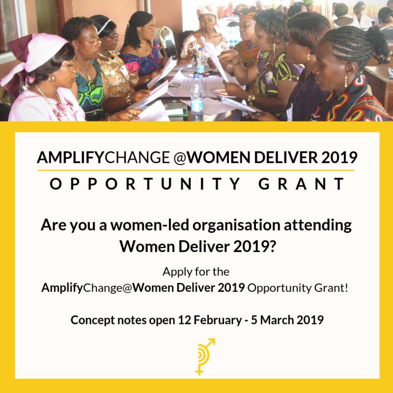 AmplifyChange @ Women Provide 2019 Chance grant for women-led civil society organisations (EUR30,000)