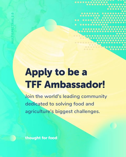 Idea For Food Ambassador Program 2019 for young changemakers