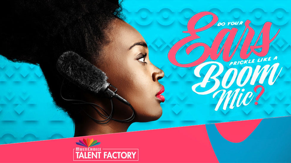 MultiChoice Skill Factory Movie Academy 2019 for African Creatives