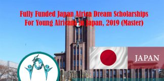 Totally Moneyed Japan Africa Dream Scholarships for Young Africans in Japan, 2019