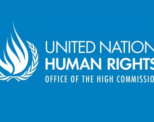 United Nations OHCHR Junior Specialist Officer Program 2019 for Establishing Nations (Moneyed to Geneva, Switzerland)