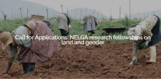 NELGA Research Study Fellowships on Land and Gender 2019 (Financing readily available)