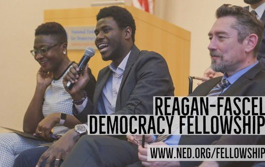 NED Reagan-Fascell Democracy Fellows Program 2020/2021(Completely Moneyed to Invest 5 Months in Washington DC, U.S.A.)