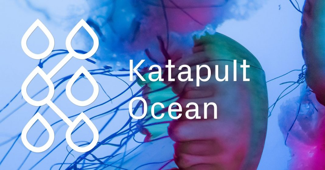 Katapult Ocean Accelerator 2019 for Tech Startups (Approximately $150 K in financial investment)