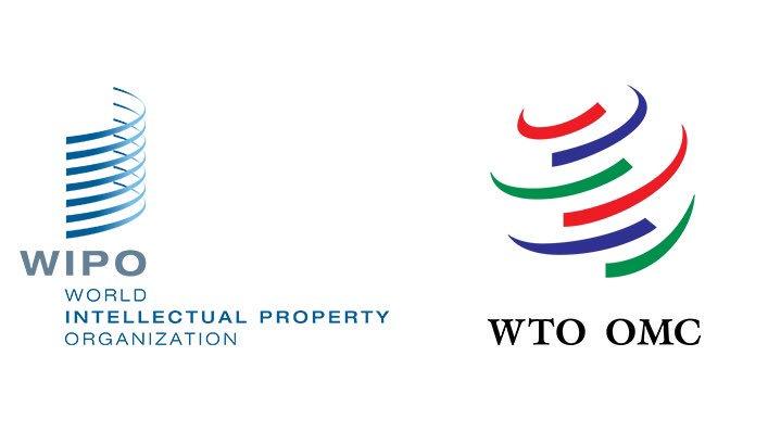 2019 WTO workshop on public health, worldwide trade and copyright, Geneva Switzerland