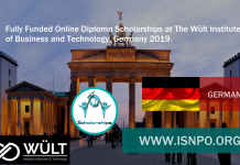Completely Moneyed Online Diploma Scholarships at The Wült Institute of Organisation and Innovation, Germany