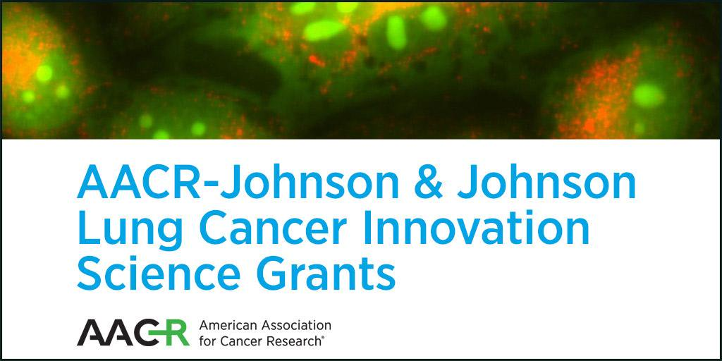 AACR-Johnson & & Johnson Lung Cancer Development Science Grants 2019 (Approximately $1,000,000)
