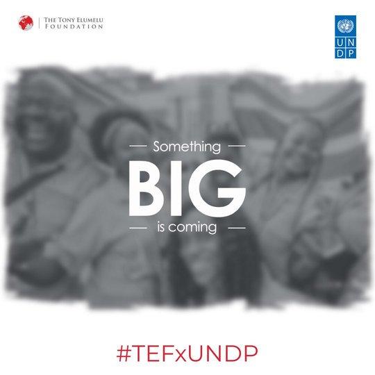 Tony Elumelu Structure TEF-UNDP Sahel Youth Entrepreneurship Program 2019 for African Business Owners