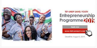 TEF-UNDP Sahel Youth Entrepreneurship Program 2019 (Seed Financing offered)