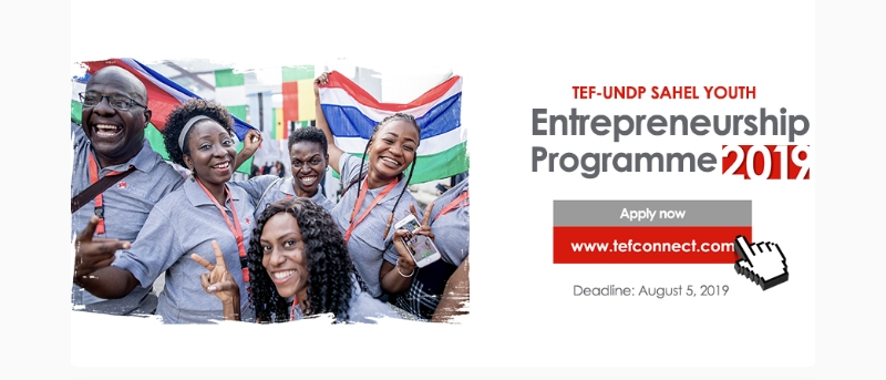 TEF-UNDP Sahel Youth Entrepreneurship Program 2019 (Seed Financing offered)