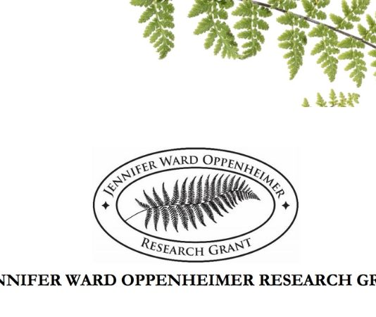 Jennifer Ward Oppenheimer Research Study Grant 2019 for African Researchers ($150,000 grant)
