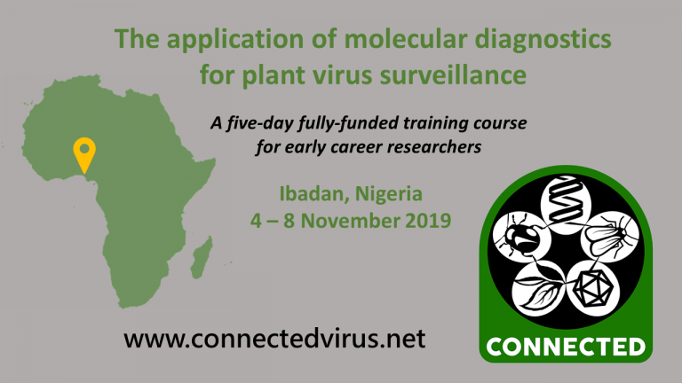 CONNECTED/IITA Vector and Infection Diagnostics Training Course 2019 for Early Profession Scientist