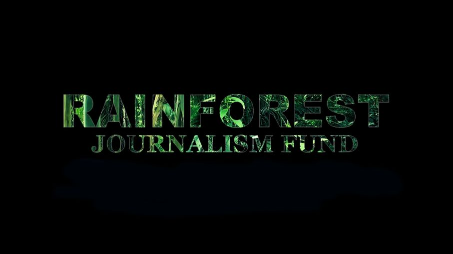 Pulitzer Center Jungle Journalism Fund 2019 (As Much As $7,500)