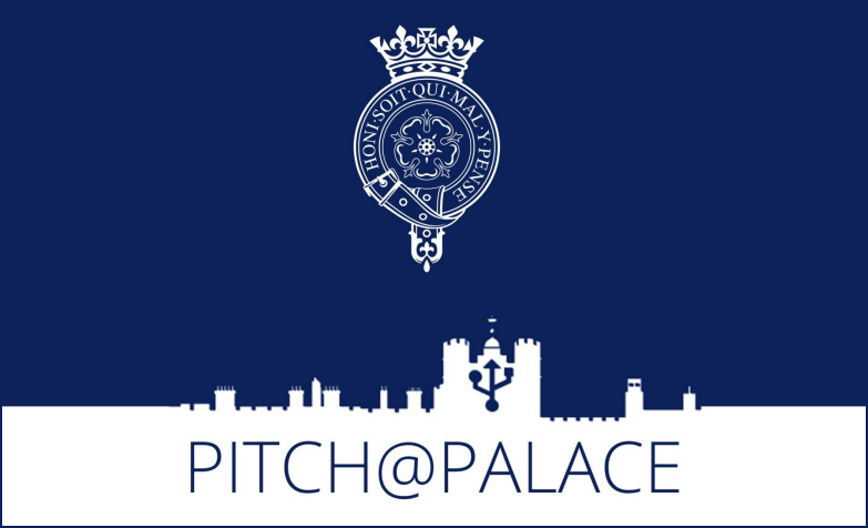Pitch@Palace Worldwide Competitors 2019 for Business Owners