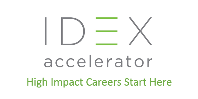 IDEX Global Accelerator 2020 for Social Business owners (Scholarship readily available)