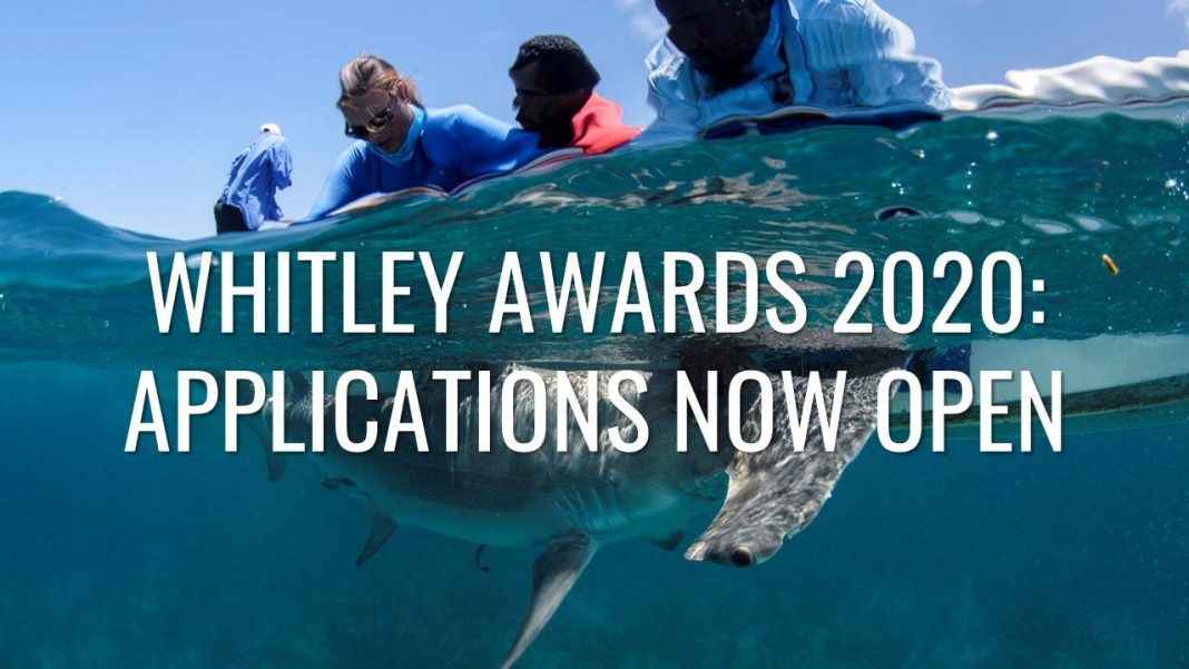 Whitley Awards 2020 for Mid-career Conservationists (Approximately ₤40,000 GBP)