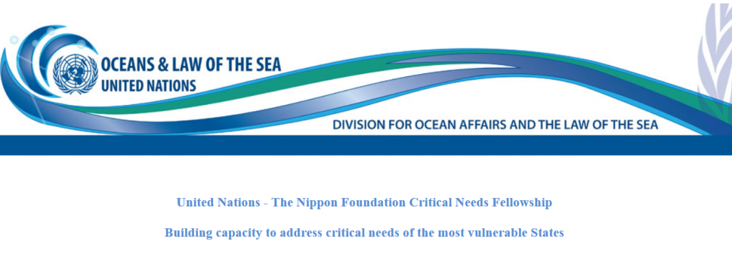 United Nations– The Nippon Structure Sustainable Ocean Program Crucial Requirements Fellowship 2020 (Moneyed)