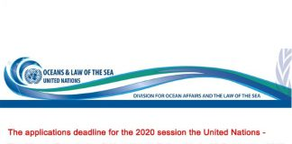 United Nations-The Nippon Structure Crucial Requirements Fellowship 2020 (Stipend readily available)