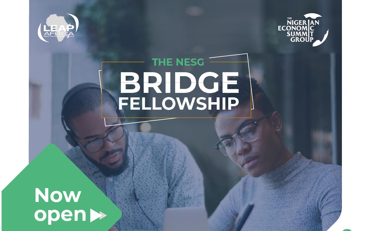Nigerian Financial Top Group (NESG) Bridge Fellowship 2019/2020