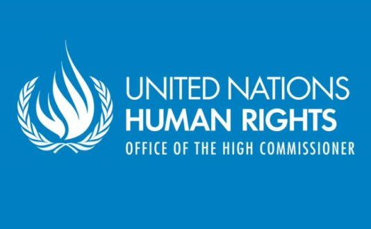 United Nations Human Rights Office – Humanitarian Funds Fellowship Programme 2020 (Stipend available)