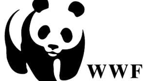 Worldwide Fund (WWF) Professional Development Grants 2020 (PDGs) for mid-career conservationists.