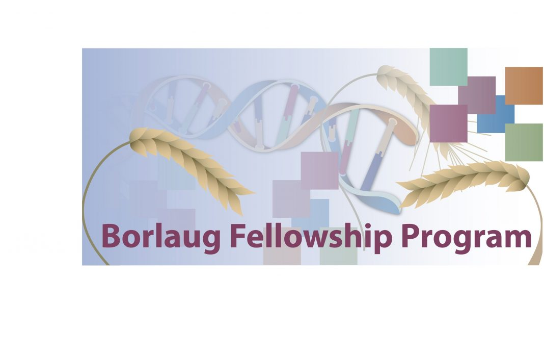 Norman E. Borlaug International Agricultural Science and Technology Fellowship Program 2020 (Funded to United States)
