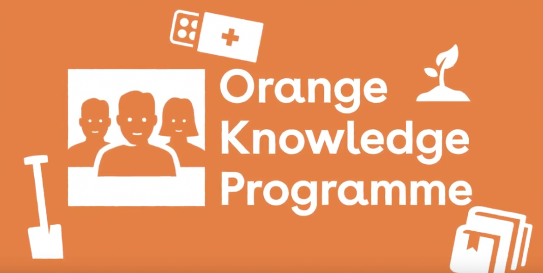 Netherlands Fellowship Programmes (NFP) – Orange Knowledge Programme (OKP) 2020 for study in Netherland (Fully Funded)