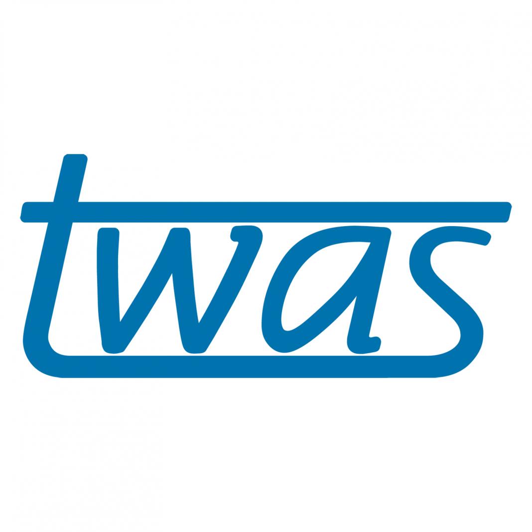 2020 TWAS Siwei Cheng Award in Economic Sciences