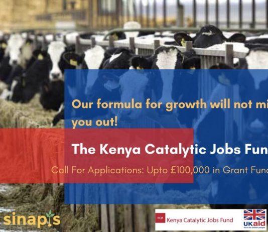 UK's Department for International Development 2020 (DFID) Kenya Catalytic Jobs Fund for young Kenyans ( GBP100,000 grant)