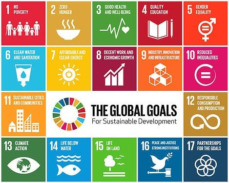 UN SDG Action Awards 2020 for change agents worldwide (Funded to  UN Headquarters in New York, USA)