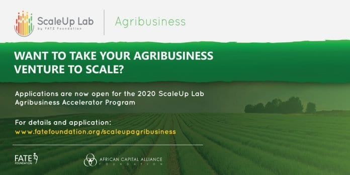 FATE Foundation ScaleUp Lab Agribusiness Accelerator Programme 2020 for young Nigerians