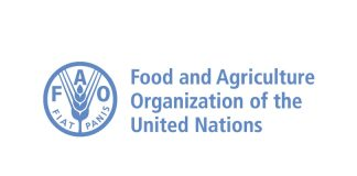 Food and Agriculture Organization of the United Nations (UN FAO) Fellows Programme 2020