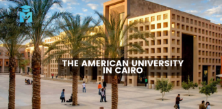Dr. Nabil Elaraby LLM Endowed Fellowship 2020 at the American University in Cairo (Funded)