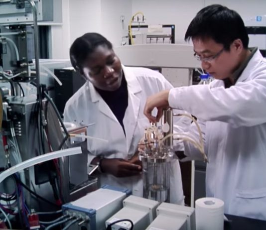TWAS-CAS Young Scientists Award for Frontier Science 2020 ($10,000 award)