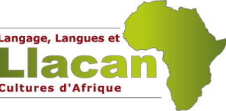 "CNRS (Paris, France) PhD Scholarship: ""Languages ​​of the Benue Valley Nigeria, Linguistic documentation and grammatical analysis"" 2020"