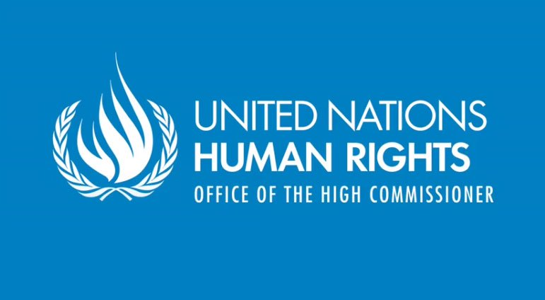 2020/2021 Internships at the Office of the United Nations High Commissioner for Human Rights (OHCHR)
