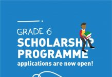 Allan Gray Orbis Fellowship Programme 2020 for young South Africans (Grade 6 Students)